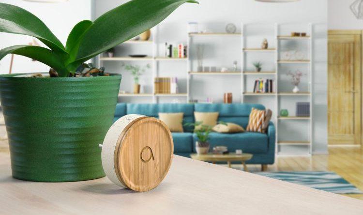 Avidsen präsentiert Bamboo – umweltfreundliche Tür-Funkklingel ohne Batterie